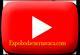 Youtube-boton-expobodacuernavaca.com-80x55